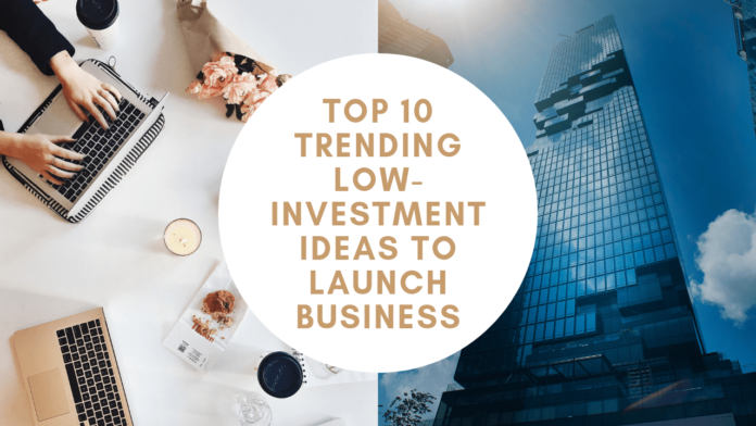 Top 10 Trending Low-Investment Ideas To Launch Business