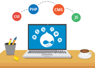 Which Is The Best Drupal Web Development Company?