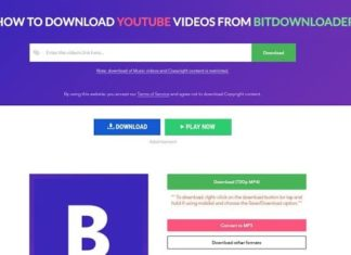 How to Download YouTube Videos from Bitdownloader