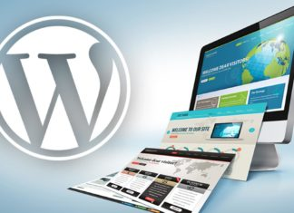 Most Widely Used Ecommerce Plugins for WORDPRESS