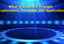 Area of a Triangle - Explanation, Formulas, and Applications